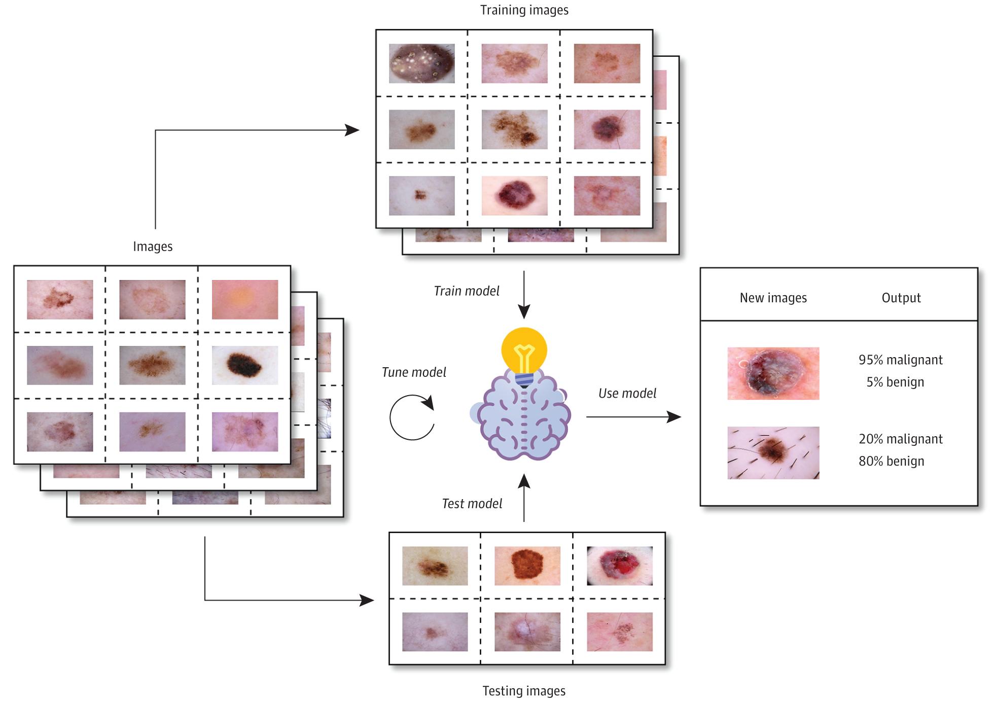 Imaging in Dermatology