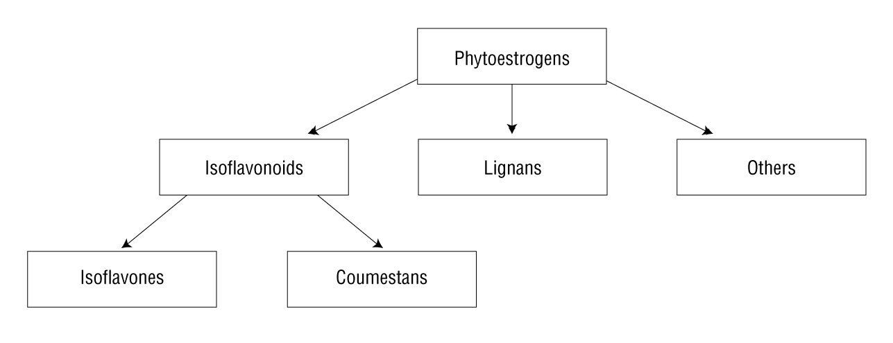 Phytoestrogens and Health