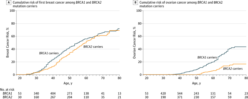 Estimated Cumulative Risks of Breast and Ovarian Cancer in Mutation Carriers