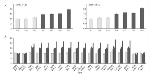 Patients Homozygous and Heterozygous for SNCA Duplication